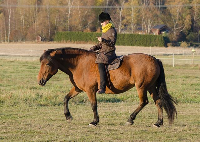 34_sara-ja-essi_1610_2015_granasa